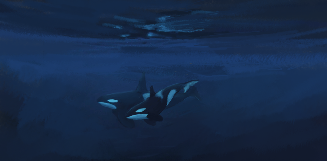 Kali Ren_#emptythetanks #freewilly orca magick art SCRATCH