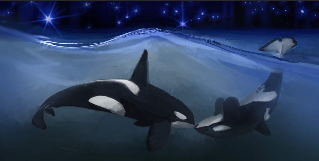 ORCA TAROT_orca art by kali ren_day 1_SIX OF CUPS_#orcatarot_#orcamagicktarot_#orcamagictarot_#orcashaman_#orcatotem_#orcaspiritguide_#orcashamanism_#path6sixofcups_#06sixofcups_#orcatarotsixofcups_#emptythetanks_#freewilly_#kalidragons_#hungerstrike_#kaliren_#kalirenart_#blackfish_#dragonqueen_#dragonking_#sixofcups